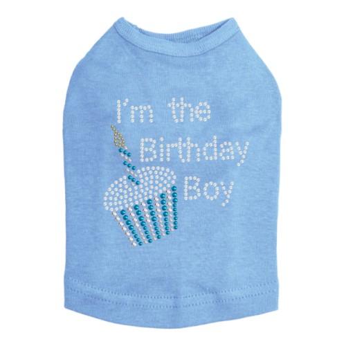 c8dfa0f2 Birthday Boy Shirt in 6 Colors - dic-birthdayboy ...