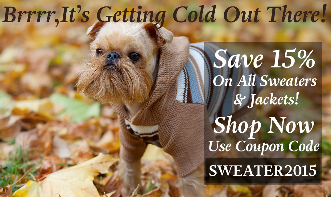 Get ready for the Fall, shop sweaters.