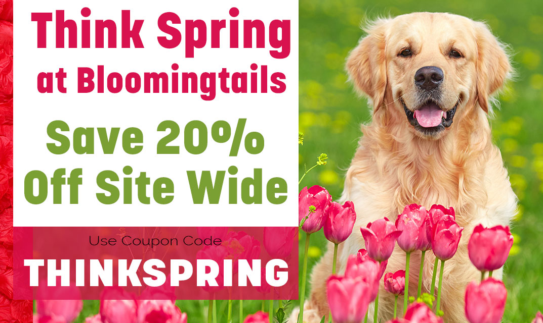 THINKSPRING-Save 20% off Site wide