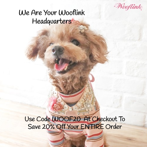Shop your Wooflink Headquarters!  We have the largest selection of Wooflink. Save 20% on your entire order with WOOF20 at checkout