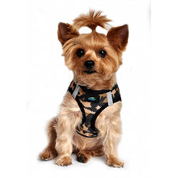 small dog harnesses