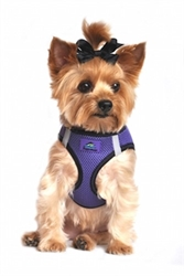Top Stitch American River Choke Free Dog Harness in Many Colors