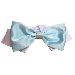Aqua Satin Dog Tie Set