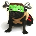 Barkenstein Dog Costume - pam-barkenstein