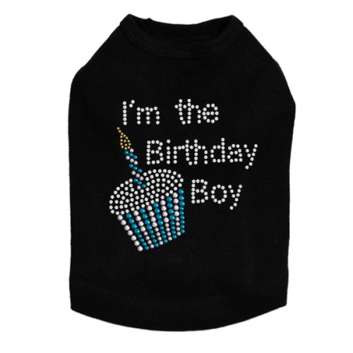 Birthday Boy  Shirt in 6 Colors - dic-birthdayboy