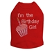 Birthday Girl  Shirt in 5 Colors  - dic-birthdaygirl