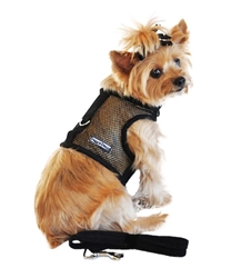 Black Cool Mesh Dog Harness with Leash    wooflink, susan lanci, dog clothes, small dog clothes, urban pup, pooch outfitters, dogo, hip doggie, doggie design, small dog dress, pet clotes, dog boutique. pet boutique, bloomingtails dog boutique, dog raincoat, dog rain coat, pet raincoat, dog shampoo, pet shampoo, dog bathrobe, pet bathrobe, dog carrier, small dog carrier, doggie couture, pet couture, dog football, dog toys, pet toys, dog clothes sale, pet clothes sale, shop local, pet store, dog store, dog chews, pet chews, worthy dog, dog bandana, pet bandana, dog halloween, pet halloween, dog holiday, pet holiday, dog teepee, custom dog clothes, pet pjs, dog pjs, pet pajamas, dog pajamas,dog sweater, pet sweater, dog hat, fabdog, fab dog, dog puffer coat, dog winter jacket, dog col