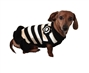 Black and White Dog Sweater Dress puppy bed,  beds,dog mat, pet mat, puppy mat, fab dog pet sweater, dog swepet clothes, dog clothes, puppy clothes, pet store, dog store, puppy boutique store, dog boutique, pet boutique, puppy boutique, Bloomingtails, dog, small dog clothes, large dog clothes, large dog costumes, small dog costumes, pet stuff, Halloween dog, puppy Halloween, pet Halloween, clothes, dog puppy Halloween, dog sale, pet sale, puppy sale, pet dog tank, pet tank, pet shirt, dog shirt, puppy shirt,puppy tank, I see spot, dog collars, dog leads, pet collar, pet lead,puppy collar, puppy lead, dog toys, pet toys, puppy toy, dog beds, pet beds, puppy bed,  beds,dog mat, pet mat, puppy mat, fab dog pet sweater, dog sweater, dog winter, pet winter,dog raincoat, pet rain