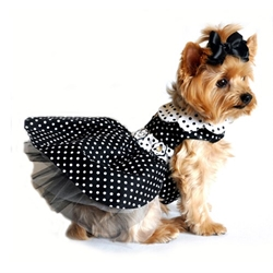 Black and White Polka Dot Dress with Matching Leash    wooflink, susan lanci, dog clothes, small dog clothes, urban pup, pooch outfitters, dogo, hip doggie, doggie design, small dog dress, pet clotes, dog boutique. pet boutique, bloomingtails dog boutique, dog raincoat, dog rain coat, pet raincoat, dog shampoo, pet shampoo, dog bathrobe, pet bathrobe, dog carrier, small dog carrier, doggie couture, pet couture, dog football, dog toys, pet toys, dog clothes sale, pet clothes sale, shop local, pet store, dog store, dog chews, pet chews, worthy dog, dog bandana, pet bandana, dog halloween, pet halloween, dog holiday, pet holiday, dog teepee, custom dog clothes, pet pjs, dog pjs, pet pajamas, dog pajamas,dog sweater, pet sweater, dog hat, fabdog, fab dog, dog puffer coat, dog winter jacket, dog col