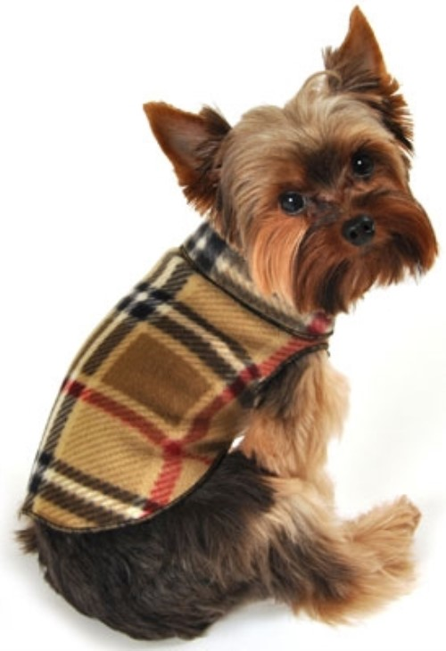 Blanket Plaid Fleece Pullover Sweater - Camel - iss-blplM-4CE