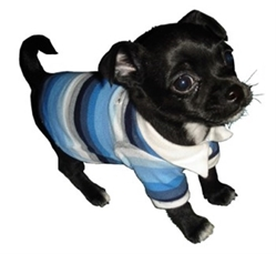 Blue Striped Dog Polo wooflink, susan lanci, dog clothes, small dog clothes, urban pup, pooch outfitters, dogo, hip doggie, doggie design, small dog dress, pet clotes, dog boutique. pet boutique, bloomingtails dog boutique, dog raincoat, dog rain coat, pet raincoat, dog shampoo, pet shampoo, dog bathrobe, pet bathrobe, dog carrier, small dog carrier, doggie couture, pet couture, dog football, dog toys, pet toys, dog clothes sale, pet clothes sale, shop local, pet store, dog store, dog chews, pet chews, worthy dog, dog bandana, pet bandana, dog halloween, pet halloween, dog holiday, pet holiday, dog teepee, custom dog clothes, pet pjs, dog pjs, pet pajamas, dog pajamas,dog sweater, pet sweater, dog hat, fabdog, fab dog, dog puffer coat, dog winter jacket, dog col