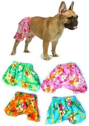 Board Shorts for Dogs - pam-boardshorts