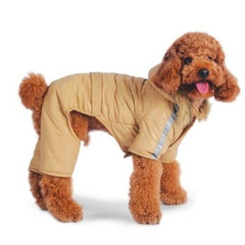 Bomber Dog Jumper in Gray or Beige - btdgo-bombgb