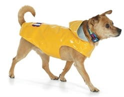 Bone Yellow Nantucket Slicker  Our stylish rain slickers are perfect rainy day attire. Hoods provide extra protection and style. Slickers have a classic ticking stripe lining. Beautiful embroidery decorates the sturdy material, and is completely waterproof. Velcro closures make dressing a snap. Extra collar patch for attaching a leash under the hood.  Outer fabric is 100% polyurethane, Lining is 70% cotton/ 30% polyester. Fabric content is 100% polyester. Machine wash with like colors, lay flat to dry. Imported