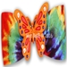 Dog Bows- Butterfly Orange Dog Hair Bow  - hb-buttero