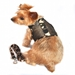 Camo Cool Mesh Dog Harness with Matching Lead - dd-camo-harnessX-235