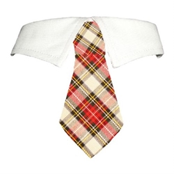Carter Dog Tie Set