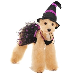 Charming Witch Costume & Hat