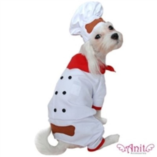 Chef  Costume - ant-chef