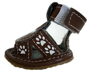 Crossbone Dog  Sandals - Brown