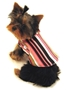 Designer Striped Reversible Dog Coat puppy bed,  beds,dog mat, pet mat, puppy mat, fab dog pet sweater, dog swepet clothes, dog clothes, puppy clothes, pet store, dog store, puppy boutique store, dog boutique, pet boutique, puppy boutique, Bloomingtails, dog, small dog clothes, large dog clothes, large dog costumes, small dog costumes, pet stuff, Halloween dog, puppy Halloween, pet Halloween, clothes, dog puppy Halloween, dog sale, pet sale, puppy sale, pet dog tank, pet tank, pet shirt, dog shirt, puppy shirt,puppy tank, I see spot, dog collars, dog leads, pet collar, pet lead,puppy collar, puppy lead, dog toys, pet toys, puppy toy, dog beds, pet beds, puppy bed,  beds,dog mat, pet mat, puppy mat, fab dog pet sweater, dog sweater, dog winter, pet winter,dog raincoat, pet rain