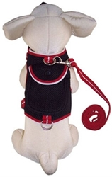 Dog Backpacks Harness & Lead