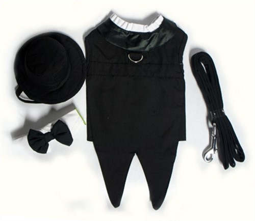 Dog Tuxedos - Classic Black dog bowls,susan lanci, puppia,wooflink, luxury dog boutique,tonimari,pet clothes, dog clothes, puppy clothes, pet store, dog store, puppy boutique store, dog boutique, pet boutique, puppy boutique, Bloomingtails, dog, small dog clothes, large dog clothes, large dog costumes, small dog costumes, pet stuff, Halloween dog, puppy Halloween, pet Halloween, clothes, dog puppy Halloween, dog sale, pet sale, puppy sale, pet dog tank, pet tank, pet shirt, dog shirt, puppy shirt,puppy tank, I see spot, dog collars, dog leads, pet collar, pet lead,puppy collar, puppy lead, dog toys, pet toys, puppy toy, dog beds, pet beds, puppy bed,  beds,dog mat, pet mat, puppy mat, fab dog pet sweater, dog sweater, dog winter, pet winter,dog raincoat, pet raincoat,
