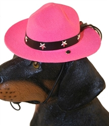 Drill Sergeant Dog Hat in 3 Colors