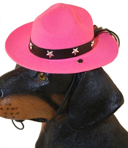 Drill Sergeant Dog Hat in 3 Colors - pam-drillserg