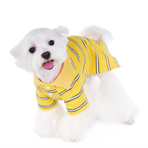 Dylan Polo Dog Shirt