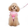 EasyGo Multi Ruffle Harness & Lead Roxy & Lulu, wooflink, susan lanci, dog clothes, small dog clothes, urban pup, pooch outfitters, dogo, hip doggie, doggie design, small dog dress, pet clotes, dog boutique. pet boutique, bloomingtails dog boutique, dog raincoat, dog rain coat, pet raincoat, dog shampoo, pet shampoo, dog bathrobe, pet bathrobe, dog carrier, small dog carrier, doggie couture, pet couture, dog football, dog toys, pet toys, dog clothes sale, pet clothes sale, shop local, pet store, dog store, dog chews, pet chews, worthy dog, dog bandana, pet bandana, dog halloween, pet halloween, dog holiday, pet holiday, dog teepee, custom dog clothes, pet pjs, dog pjs, pet pajamas, dog pajamas,dog sweater, pet sweater, dog hat, fabdog, fab dog, dog puffer coat, dog winter ja