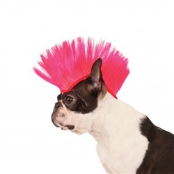 Electric Pink Mohawk Dog Wig