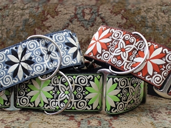 Extra Wide Pinwheel Collection Dog Collar-Personalizable -6 Choices wooflink, susan lanci, dog clothes, small dog clothes, urban pup, pooch outfitters, dogo, hip doggie, doggie design, small dog dress, pet clotes, dog boutique. pet boutique, bloomingtails dog boutique, dog raincoat, dog rain coat, pet raincoat, dog shampoo, pet shampoo, dog bathrobe, pet bathrobe, dog carrier, small dog carrier, doggie couture, pet couture, dog football, dog toys, pet toys, dog clothes sale, pet clothes sale, shop local, pet store, dog store, dog chews, pet chews, worthy dog, dog bandana, pet bandana, dog halloween, pet halloween, dog holiday, pet holiday, dog teepee, custom dog clothes, pet pjs, dog pjs, pet pajamas, dog pajamas,dog sweater, pet sweater, dog hat, fabdog, fab dog, dog puffer coat, dog winter jacket, dog col