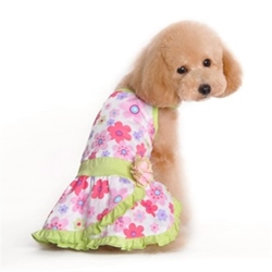 Floral Summer Dog Dress  puppy bed,  beds,dog mat, pet mat, puppy mat, fab dog pet sweater, dog swepet clothes, dog clothes, puppy clothes, pet store, dog store, puppy boutique store, dog boutique, pet boutique, puppy boutique, Bloomingtails, dog, small dog clothes, large dog clothes, large dog costumes, small dog costumes, pet stuff, Halloween dog, puppy Halloween, pet Halloween, clothes, dog puppy Halloween, dog sale, pet sale, puppy sale, pet dog tank, pet tank, pet shirt, dog shirt, puppy shirt,puppy tank, I see spot, dog collars, dog leads, pet collar, pet lead,puppy collar, puppy lead, dog toys, pet toys, puppy toy, dog beds, pet beds, puppy bed,  beds,dog mat, pet mat, puppy mat, fab dog pet sweater, dog sweater, dog winter, pet winter,dog raincoat, pet rai