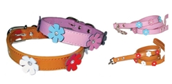 Flower Dog Collar & Matching Lead