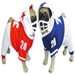 Football Dog Costume - pam-football