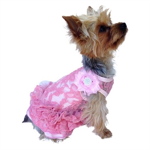 Garden Party Dress in 3 Colors - dogsq-garden