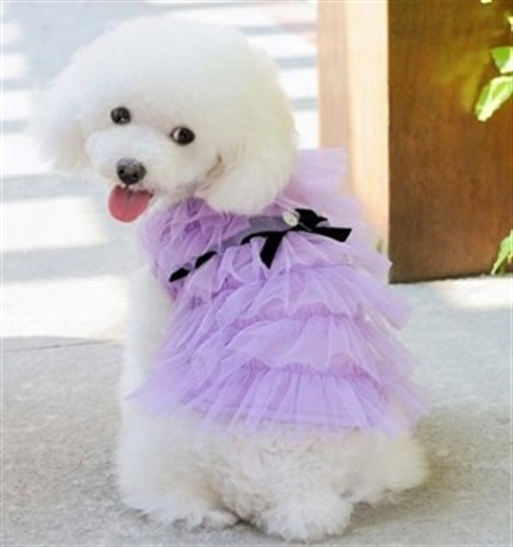 Gia Dog Dress - kanecou-gia