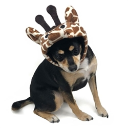 Giraffe Hat   Roxy & Lulu, wooflink, susan lanci, dog clothes, small dog clothes, urban pup, pooch outfitters, dogo, hip doggie, doggie design, small dog dress, pet clotes, dog boutique. pet boutique, bloomingtails dog boutique, dog raincoat, dog rain coat, pet raincoat, dog shampoo, pet shampoo, dog bathrobe, pet bathrobe, dog carrier, small dog carrier, doggie couture, pet couture, dog football, dog toys, pet toys, dog clothes sale, pet clothes sale, shop local, pet store, dog store, dog chews, pet chews, worthy dog, dog bandana, pet bandana, dog halloween, pet halloween, dog holiday, pet holiday, dog teepee, custom dog clothes, pet pjs, dog pjs, pet pajamas, dog pajamas,dog sweater, pet sweater, dog hat, fabdog, fab dog, dog puffer coat, dog winter ja