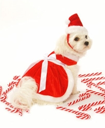 Girl Santa Dog Harness Dress, Hat & Lead wooflink, susan lanci, dog clothes, small dog clothes, urban pup, pooch outfitters, dogo, hip doggie, doggie design, small dog dress, pet clotes, dog boutique. pet boutique, bloomingtails dog boutique, dog raincoat, dog rain coat, pet raincoat, dog shampoo, pet shampoo, dog bathrobe, pet bathrobe, dog carrier, small dog carrier, doggie couture, pet couture, dog football, dog toys, pet toys, dog clothes sale, pet clothes sale, shop local, pet store, dog store, dog chews, pet chews, worthy dog, dog bandana, pet bandana, dog halloween, pet halloween, dog holiday, pet holiday, dog teepee, custom dog clothes, pet pjs, dog pjs, pet pajamas, dog pajamas,dog sweater, pet sweater, dog hat, fabdog, fab dog, dog puffer coat, dog winter jacket, dog col