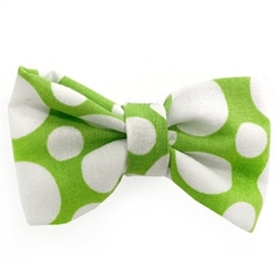 Green & White Circles Bowtie wooflink, susan lanci, dog clothes, small dog clothes, urban pup, pooch outfitters, dogo, hip doggie, doggie design, small dog dress, pet clotes, dog boutique. pet boutique, bloomingtails dog boutique, dog raincoat, dog rain coat, pet raincoat, dog shampoo, pet shampoo, dog bathrobe, pet bathrobe, dog carrier, small dog carrier, doggie couture, pet couture, dog football, dog toys, pet toys, dog clothes sale, pet clothes sale, shop local, pet store, dog store, dog chews, pet chews, worthy dog, dog bandana, pet bandana, dog halloween, pet halloween, dog holiday, pet holiday, dog teepee, custom dog clothes, pet pjs, dog pjs, pet pajamas, dog pajamas,dog sweater, pet sweater, dog hat, fabdog, fab dog, dog puffer coat, dog winter jacket, dog col
