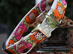 HOwl Pumpkin Dog Collar-Personalizable  wooflink, susan lanci, dog clothes, small dog clothes, urban pup, pooch outfitters, dogo, hip doggie, doggie design, small dog dress, pet clotes, dog boutique. pet boutique, bloomingtails dog boutique, dog raincoat, dog rain coat, pet raincoat, dog shampoo, pet shampoo, dog bathrobe, pet bathrobe, dog carrier, small dog carrier, doggie couture, pet couture, dog football, dog toys, pet toys, dog clothes sale, pet clothes sale, shop local, pet store, dog store, dog chews, pet chews, worthy dog, dog bandana, pet bandana, dog halloween, pet halloween, dog holiday, pet holiday, dog teepee, custom dog clothes, pet pjs, dog pjs, pet pajamas, dog pajamas,dog sweater, pet sweater, dog hat, fabdog, fab dog, dog puffer coat, dog winter jacket, dog col