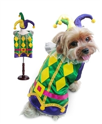 Harlequin Mardi Gras Costume dog bowls,susan lanci, puppia,wooflink, luxury dog boutique,tonimari,pet clothes, dog clothes, puppy clothes, pet store, dog store, puppy boutique store, dog boutique, pet boutique, puppy boutique, Bloomingtails, dog, small dog clothes, large dog clothes, large dog costumes, small dog costumes, pet stuff, Halloween dog, puppy Halloween, pet Halloween, clothes, dog puppy Halloween, dog sale, pet sale, puppy sale, pet dog tank, pet tank, pet shirt, dog shirt, puppy shirt,puppy tank, I see spot, dog collars, dog leads, pet collar, pet lead,puppy collar, puppy lead, dog toys, pet toys, puppy toy, dog beds, pet beds, puppy bed,  beds,dog mat, pet mat, puppy mat, fab dog pet sweater, dog sweater, dog winter, pet winter,dog raincoat, pet raincoat,