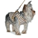 Harness Shirt/Vest/w Optional Matching Lead - dogo-dgharnessB-RWE