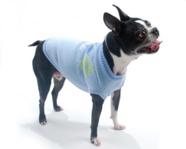 Hole in One Dog Golf Sweater - on-golf
