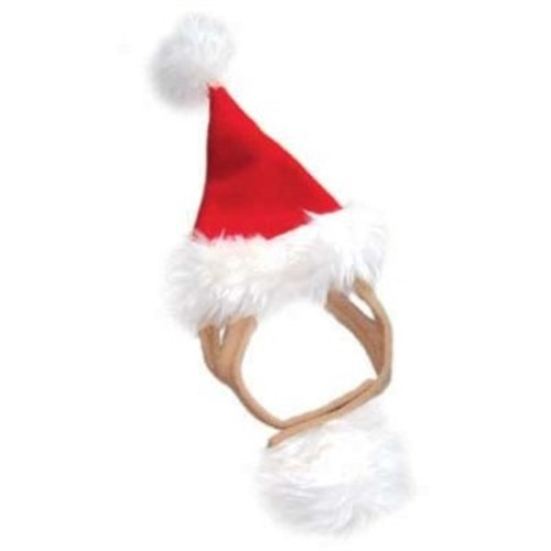 Holiday Santa Hat - dgo-santa-hat