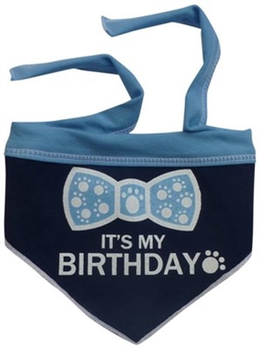 Its My Birthday Dog Scarf in Pink or Blue - iss-birthday-scarf