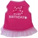 Its My Birthday in Blue or Pink - iss-birthdayBX-CER