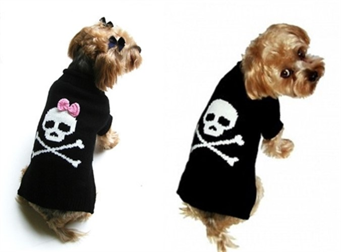 Jolly Roger Dog Sweater - Boy or Girl - daldog-jolly-sweater