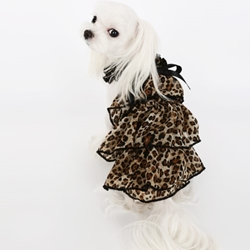 Kay Luxury Cancan Dress in 3 Colors wooflink, susan lanci, dog clothes, small dog clothes, urban pup, pooch outfitters, dogo, hip doggie, doggie design, small dog dress, pet clotes, dog boutique. pet boutique, bloomingtails dog boutique, dog raincoat, dog rain coat, pet raincoat, dog shampoo, pet shampoo, dog bathrobe, pet bathrobe, dog carrier, small dog carrier, doggie couture, pet couture, dog football, dog toys, pet toys, dog clothes sale, pet clothes sale, shop local, pet store, dog store, dog chews, pet chews, worthy dog, dog bandana, pet bandana, dog halloween, pet halloween, dog holiday, pet holiday, dog teepee, custom dog clothes, pet pjs, dog pjs, pet pajamas, dog pajamas,dog sweater, pet sweater, dog hat, fabdog, fab dog, dog puffer coat, dog winter jacket, dog col